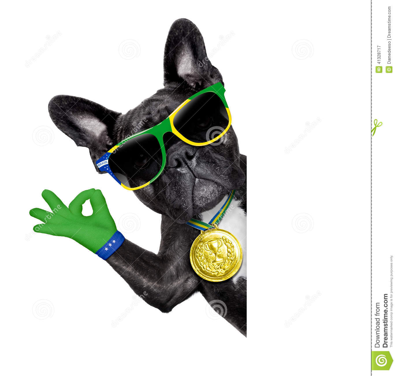 brazil soccer dog stock image image of player  animal 41328717 football player vector clipart football players vector files