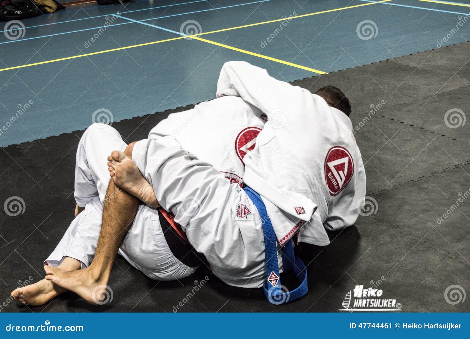 Braziliaanse Jiu Jitsu