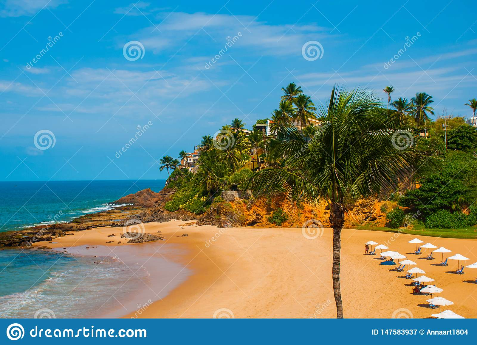 Brazilian beach with yellow sand and blue sea in Sunny weather. Brazil. Salvador. South America