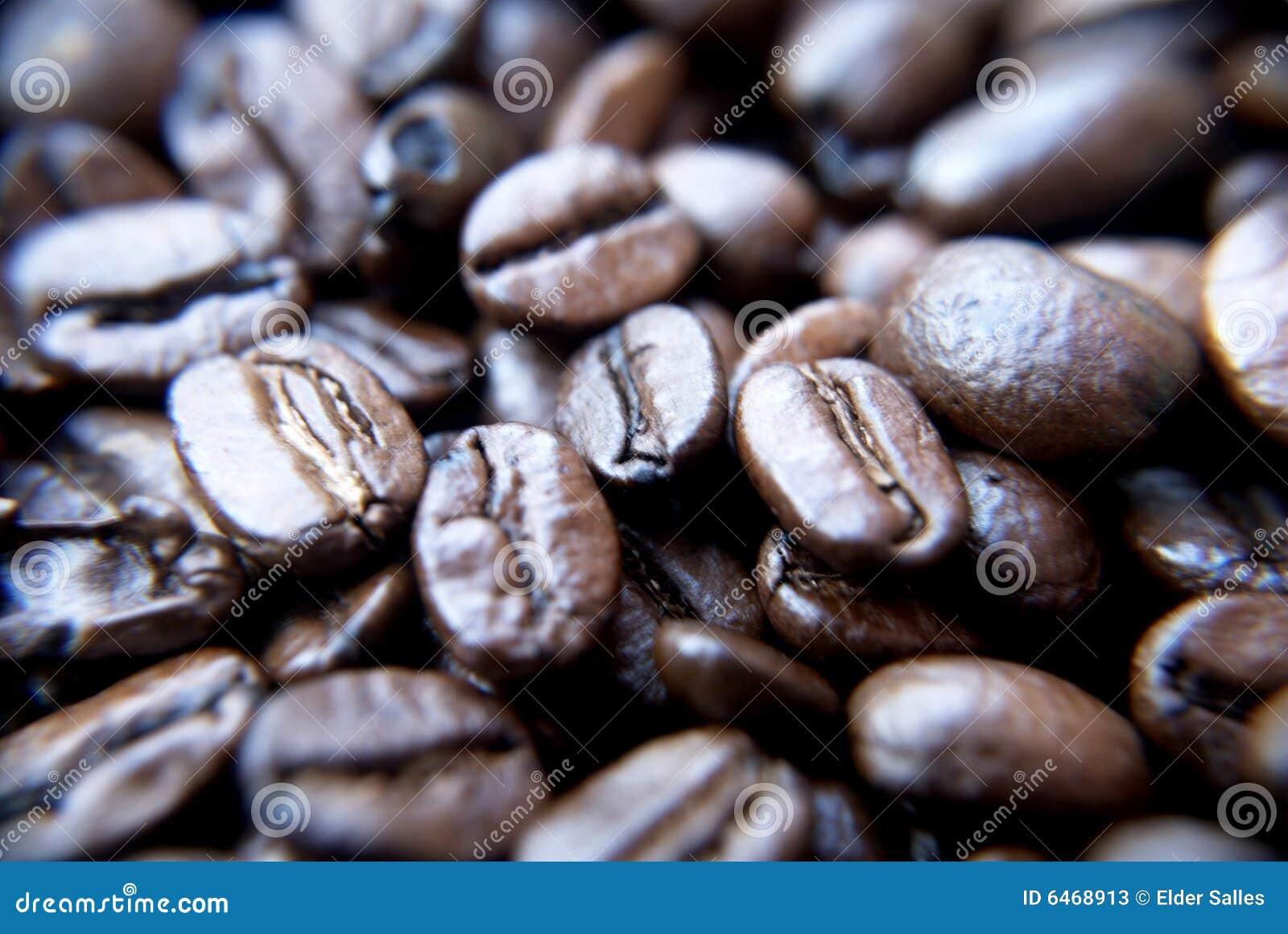 Brazylijskie ziarna kawy