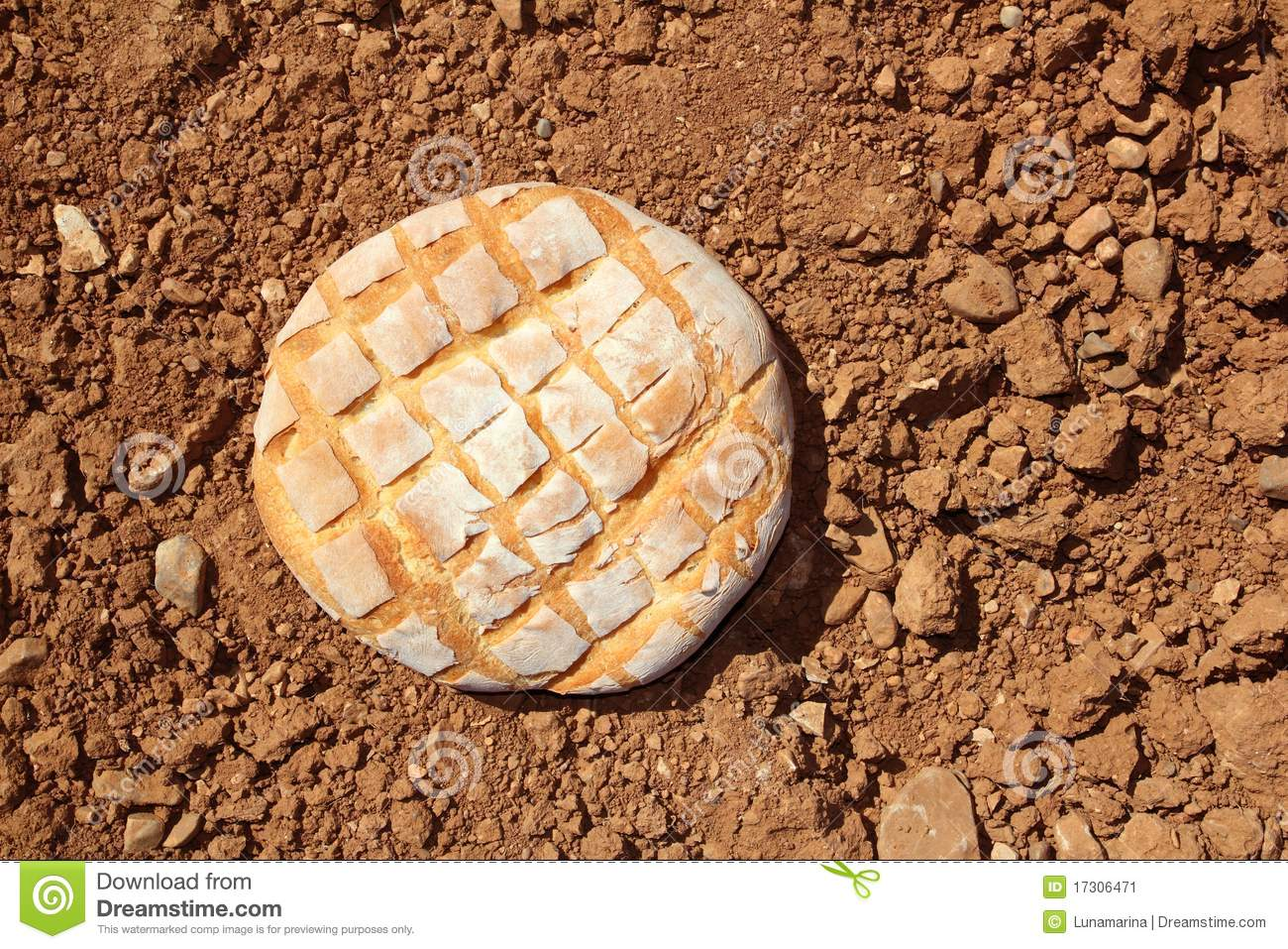 Bread bun round on red clay soil background stock image for Soil yellow color