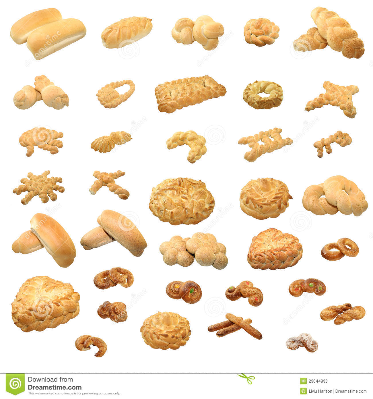 collection of 36 unique types of bread, modeled in various forms ...