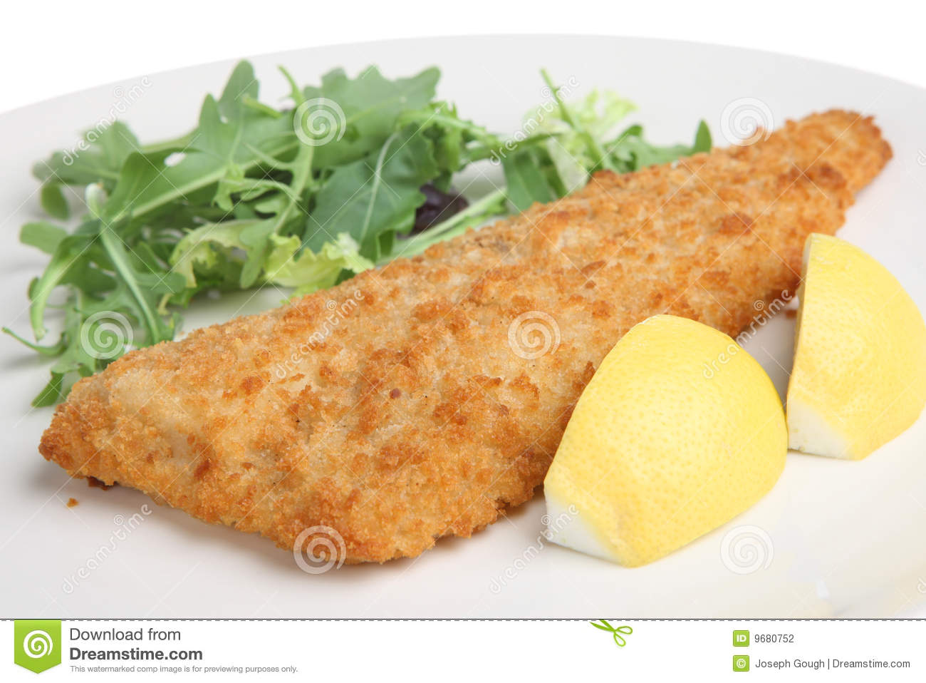 Breaded fried fish fillet stock photography image 9680752 for How to make breaded fish