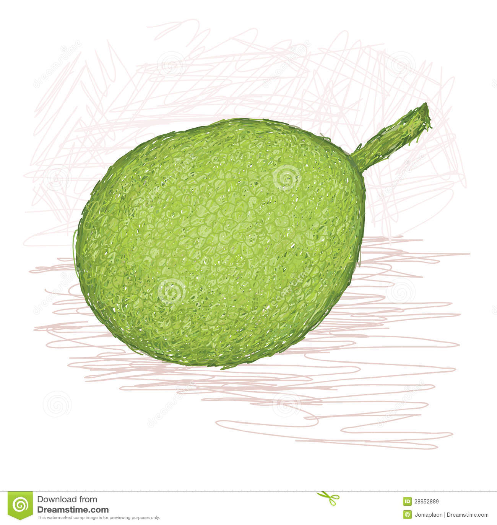 Breadfruit skinned rozmaitość