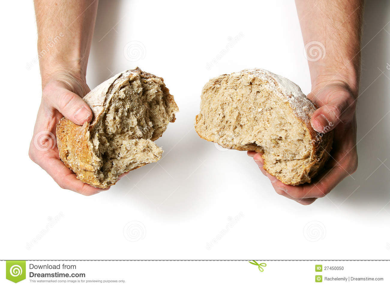 Breaking apart a fresh loaf of bread against a white background.