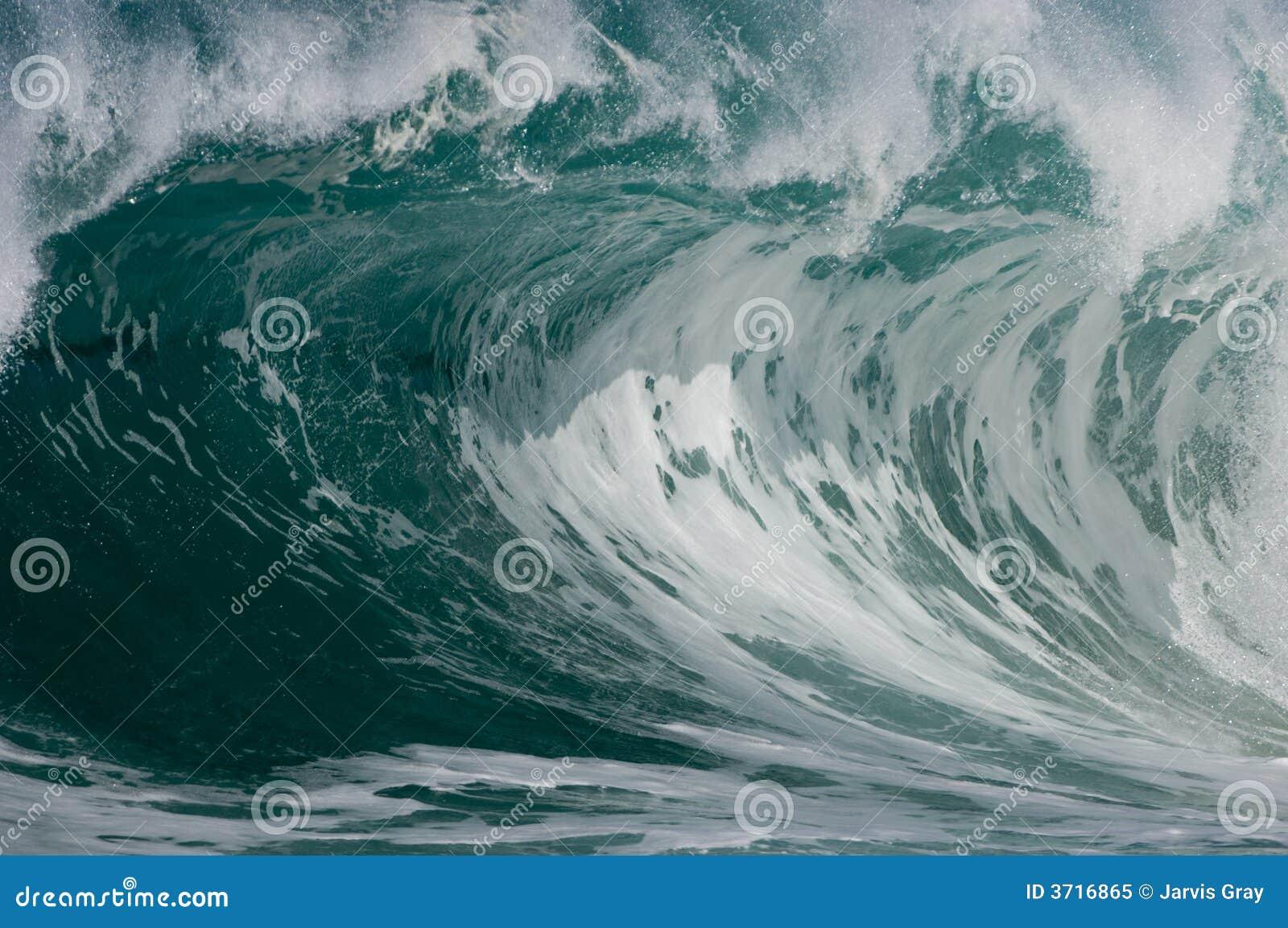 Breaking surf wave