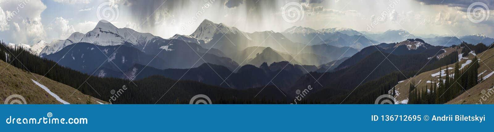 Breathtaking panoramiczny widok wspaniałe mgłowe Karpackie góry, zakrywający z zieleń lasem na mglistym spokojnym ranku lub