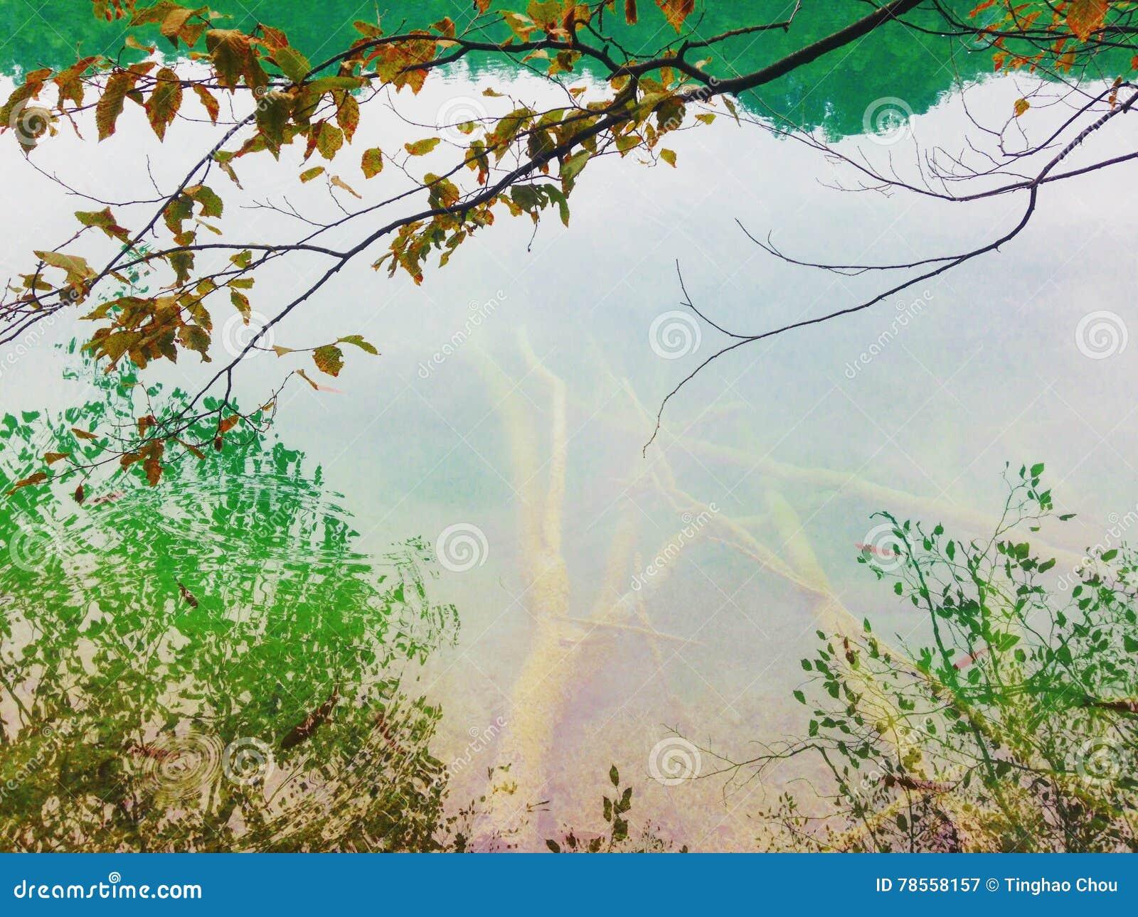 Breathtaking scene of Plitvice lake,national park of Croatia. Listed on UNESCO world heritage.