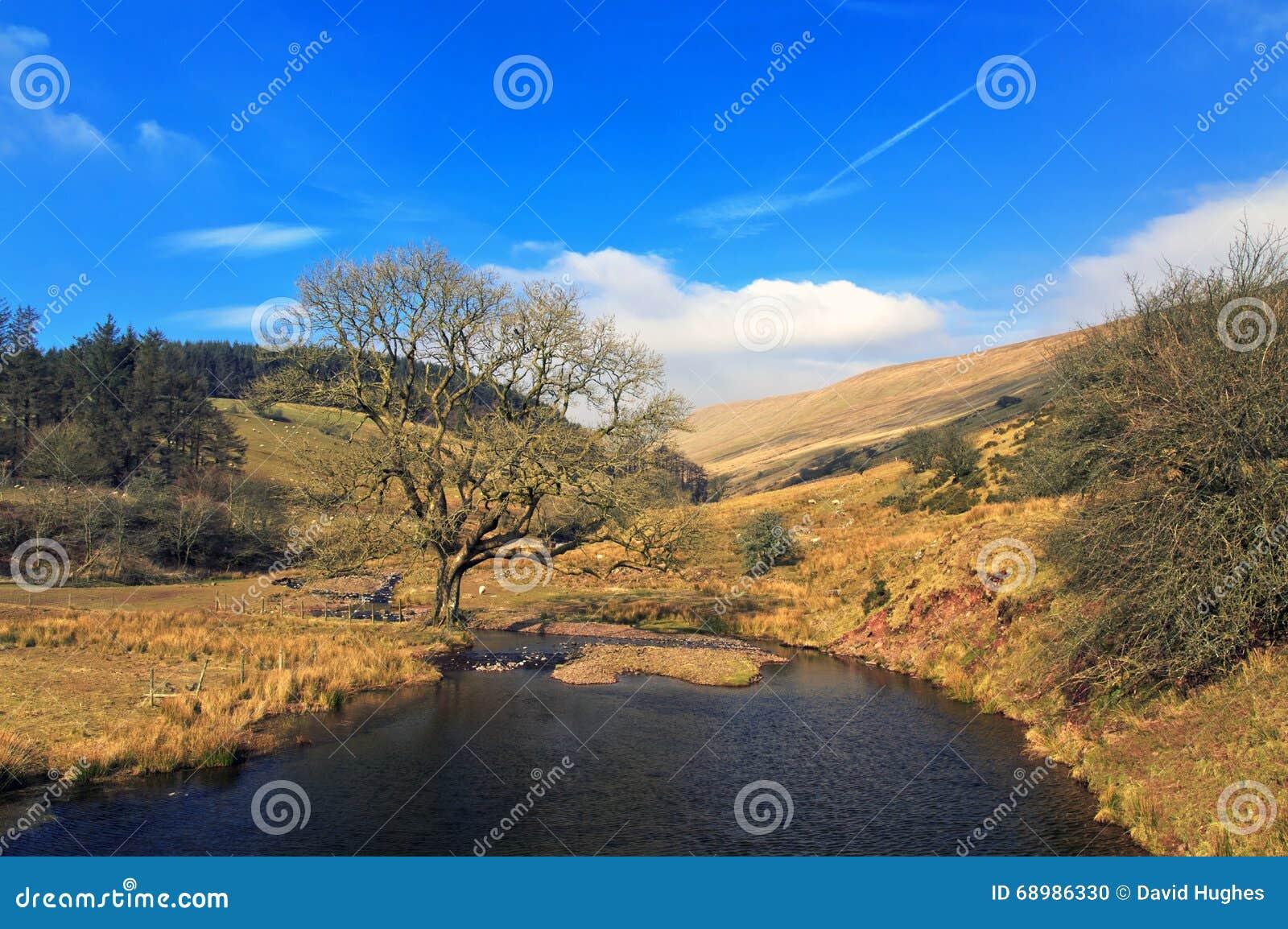 Brecon baliza el río del equipo de Nant del parque nacional cerca del depósito de Cantref