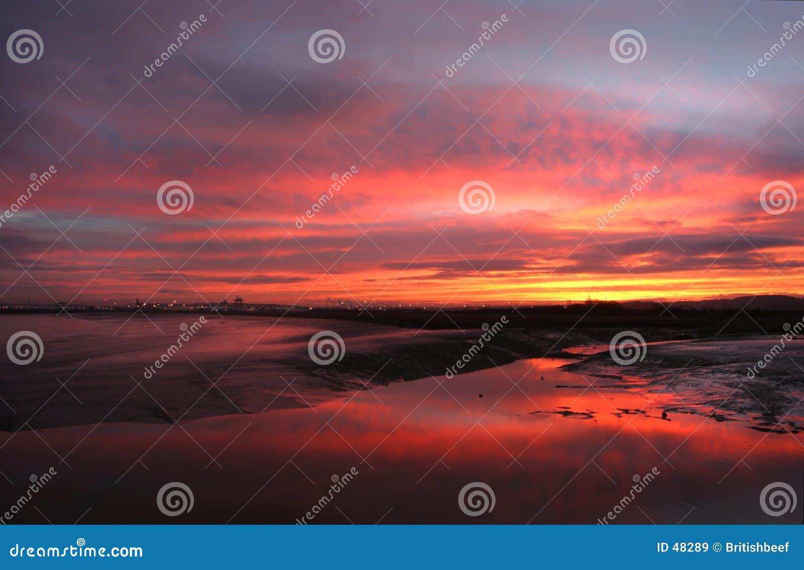 Bred flodmynning över soluppgång