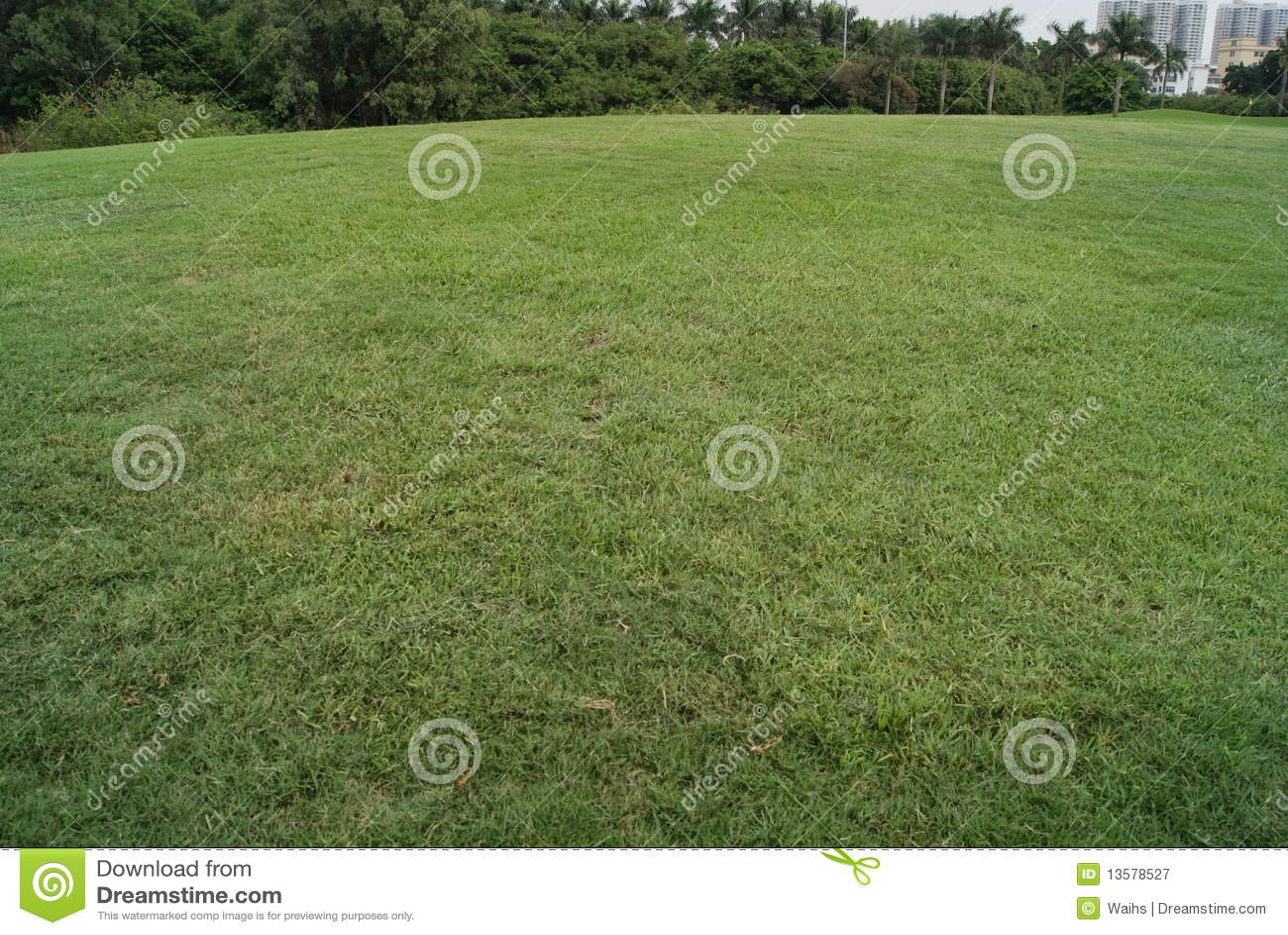 Bred lawn