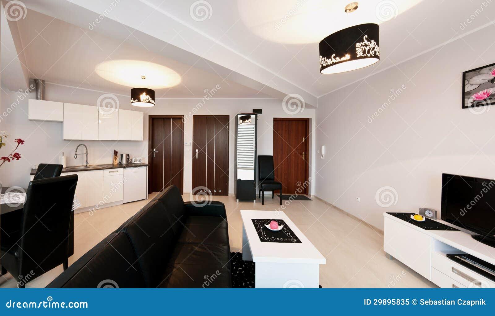 Elegante moderne flatruimte royalty vrije stock foto afbeelding 29895835 - Hoe een moderne woonkamer te versieren ...