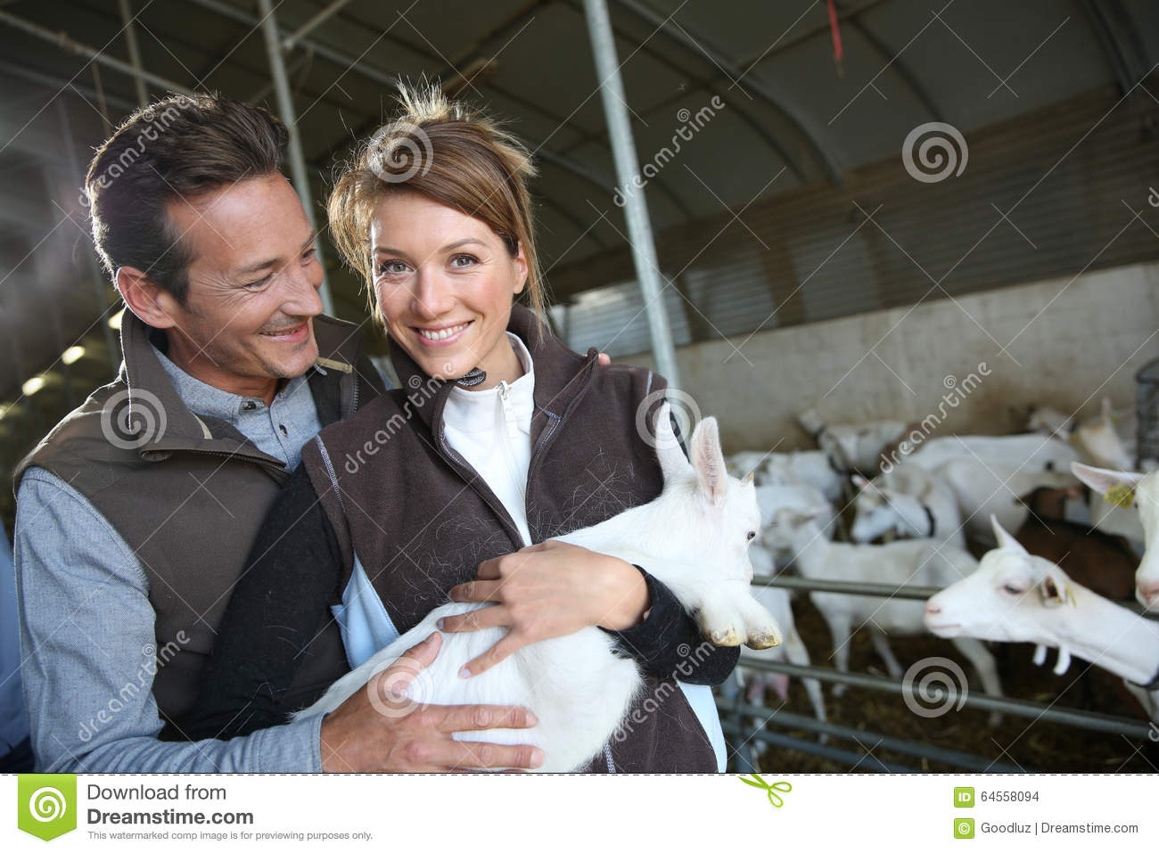 Breeders in farm holding a baby goat