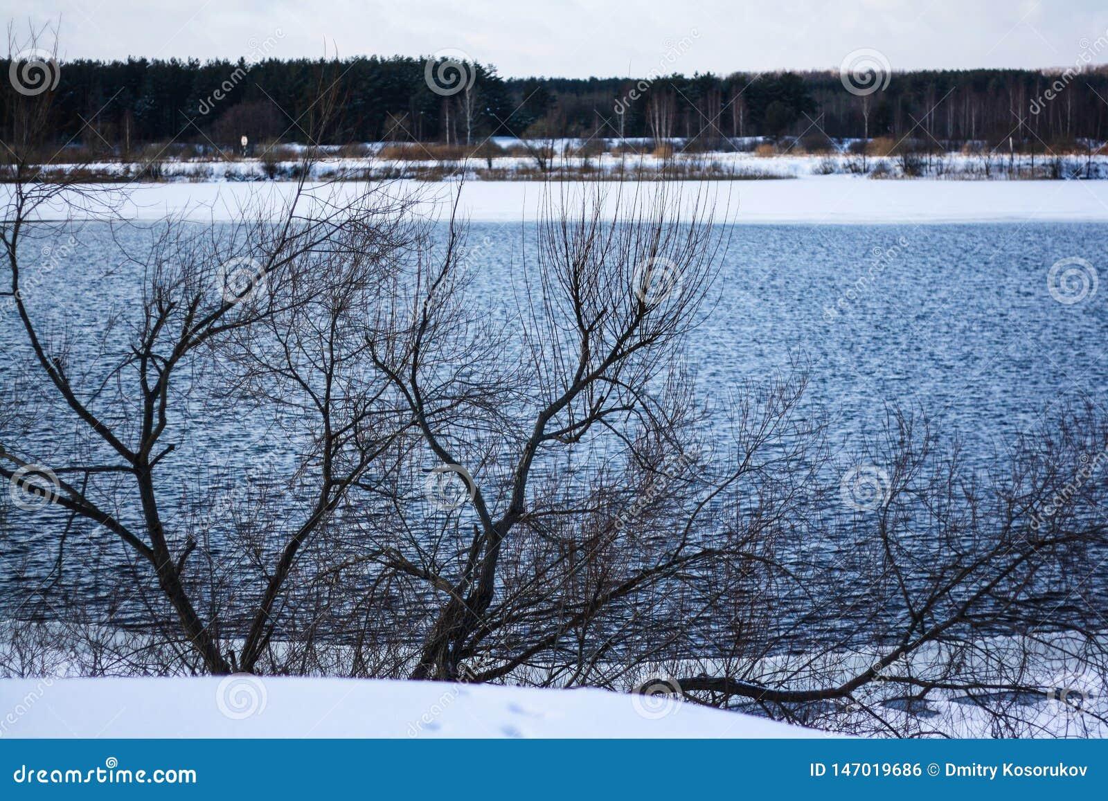 Breiter Fluss im Winterwald