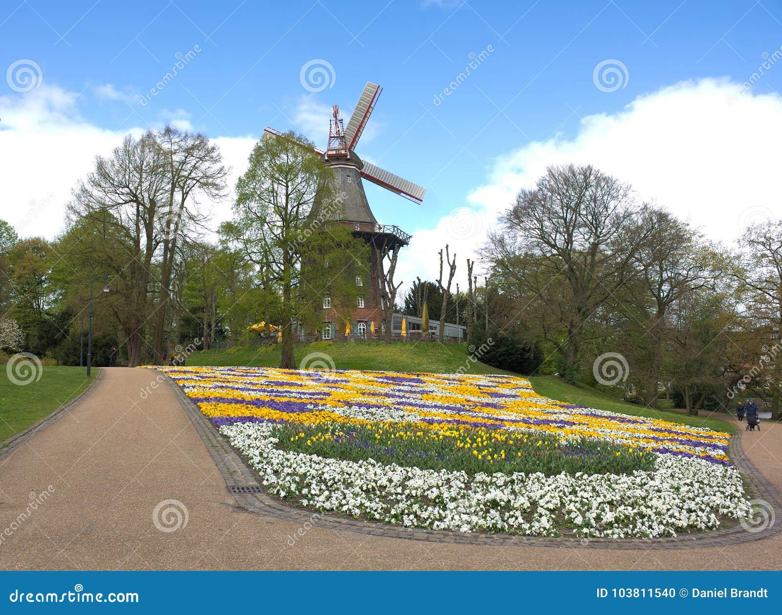 Bremen - wiatraczek w parku - V -