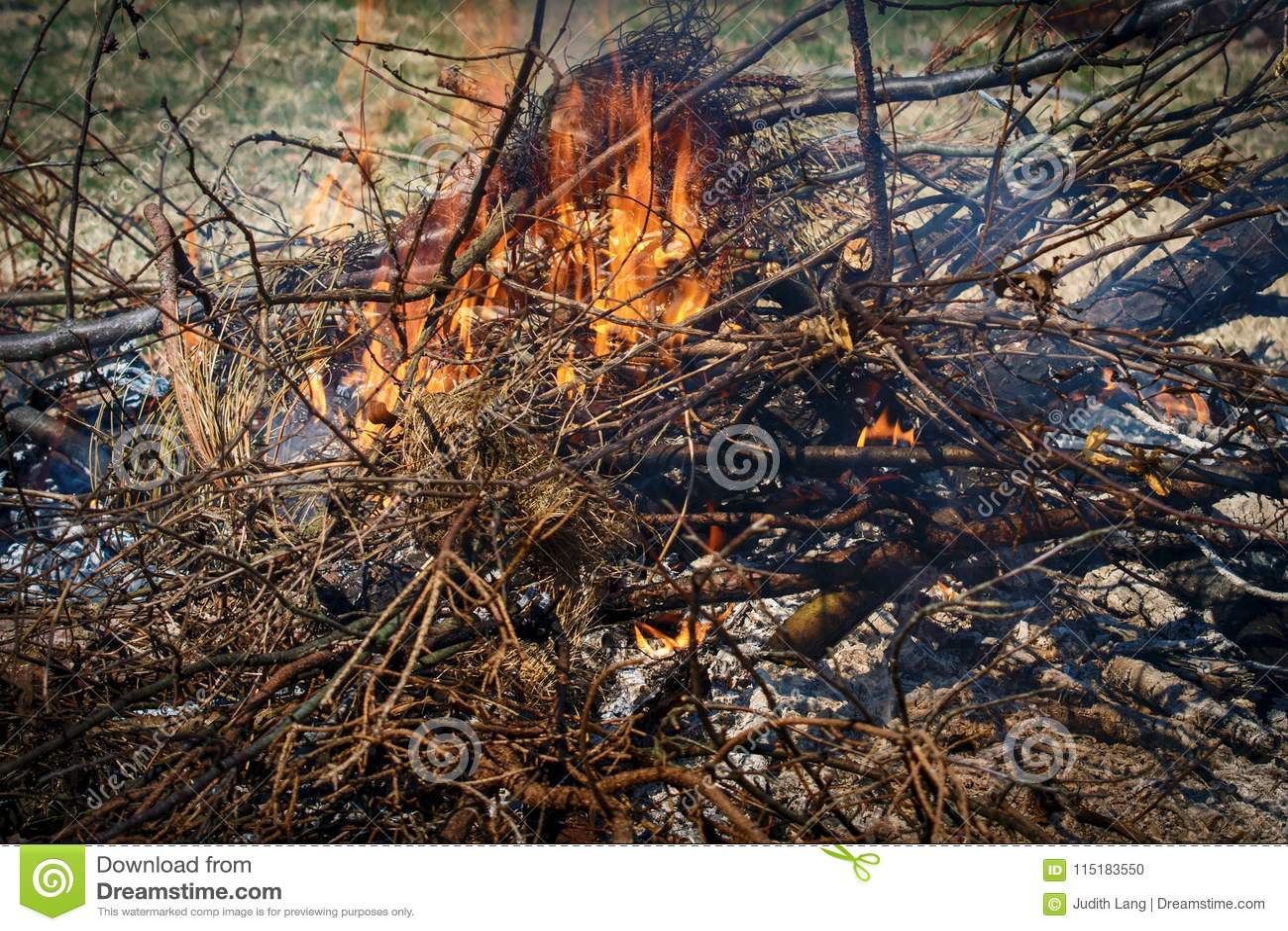 Brennende Niederlassungen und Bürste und Flammen