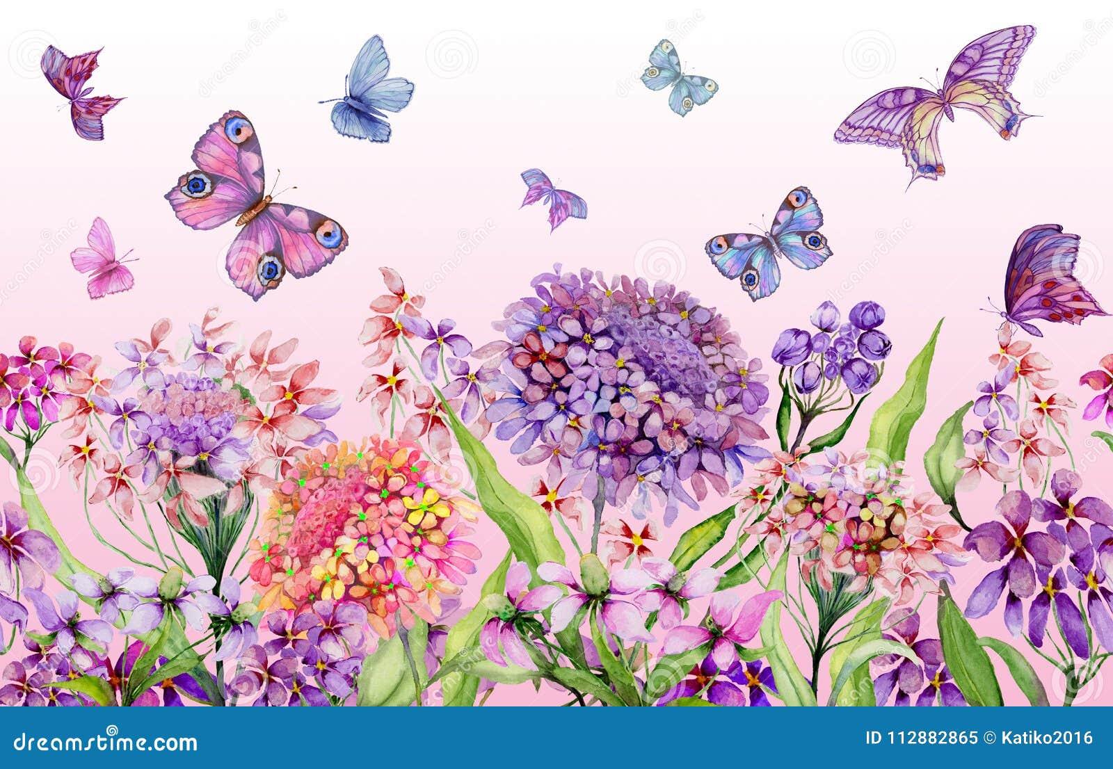 Brett baner för sommar Härliga livliga iberisblommor och färgrika fjärilar på rosa bakgrund Horisontalmall