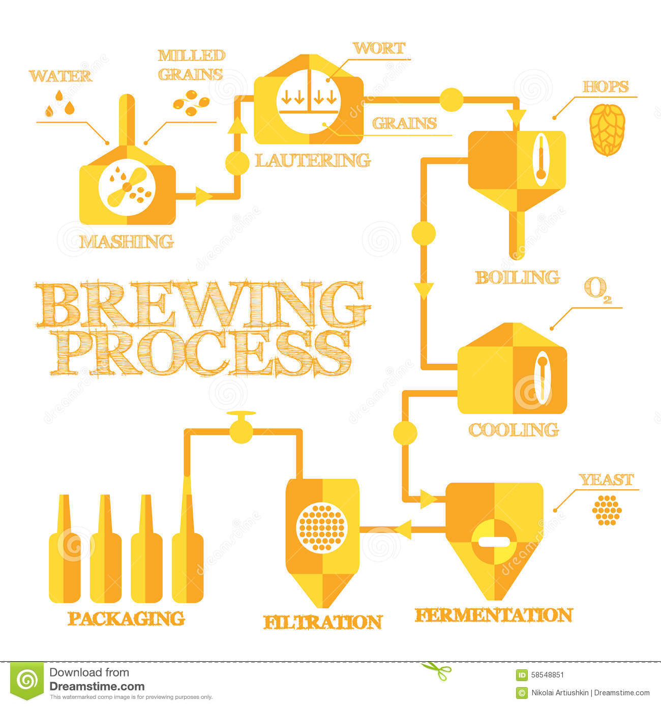 Brewing Infographic Stock Vector Image 58548851