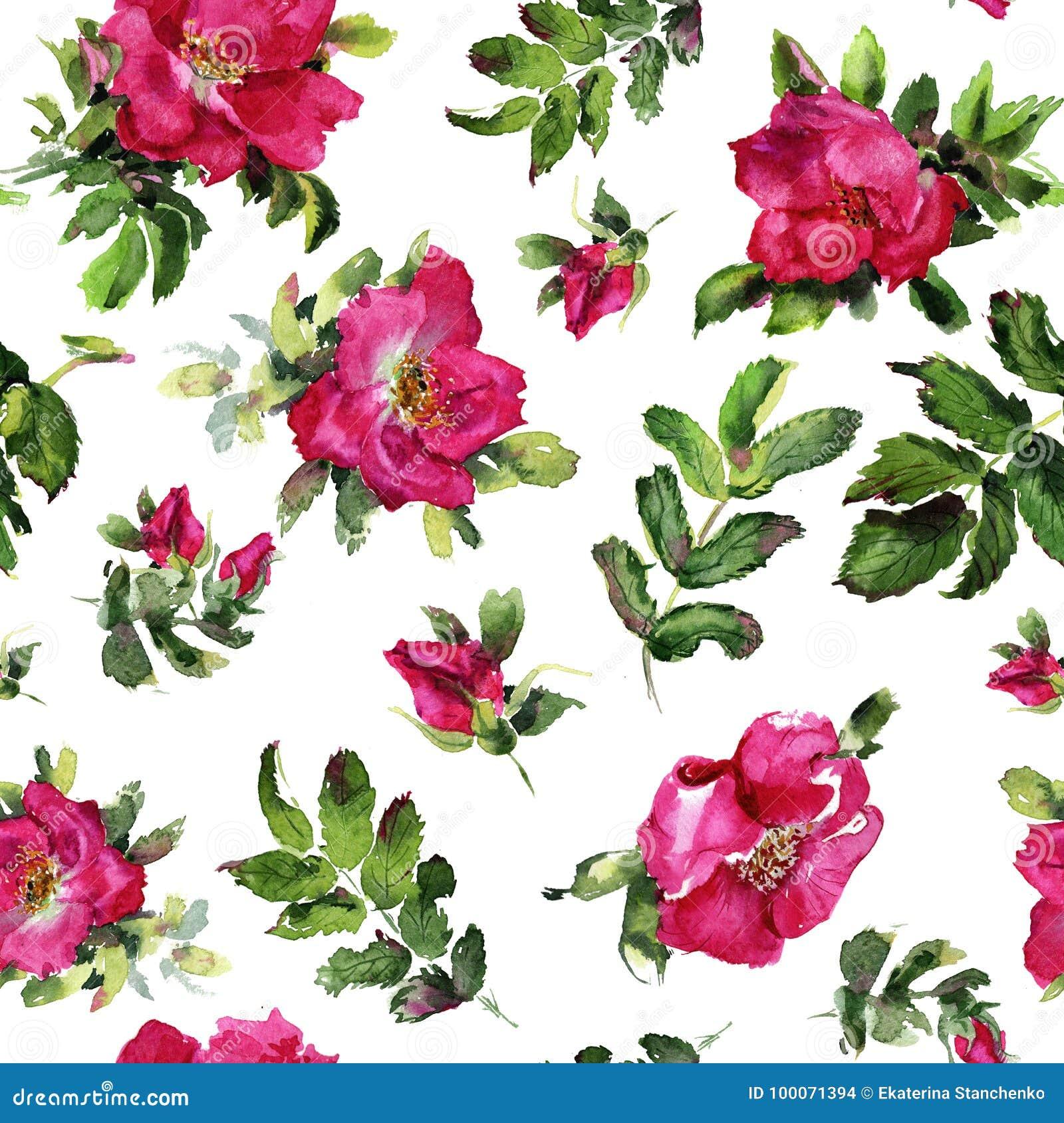 Briar Rose flowers handmade watercolor seamless pattern gentle