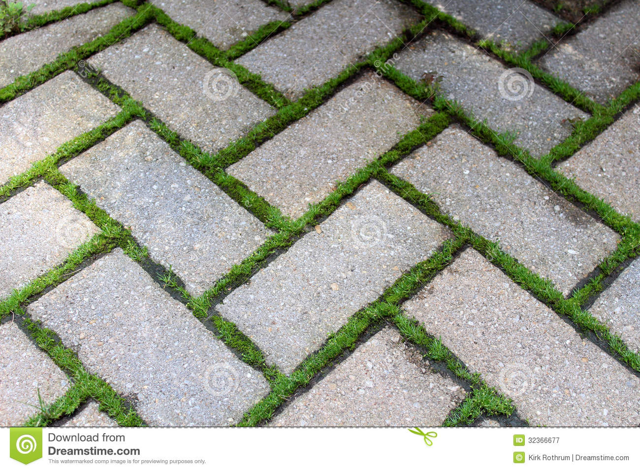 Brick Pavers With Moss Royalty Free Stock Photography