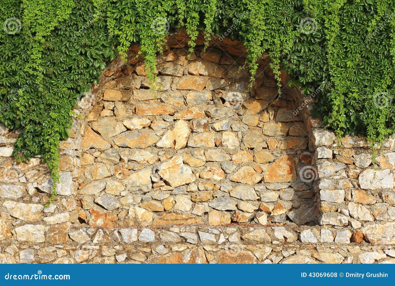 Brick Wall And Climbing Plant Stock Photo 43069608 - Megapixl