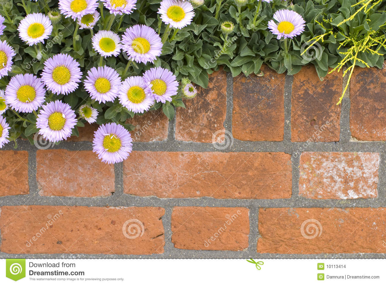 Brick Wall With Flowers Stock Image