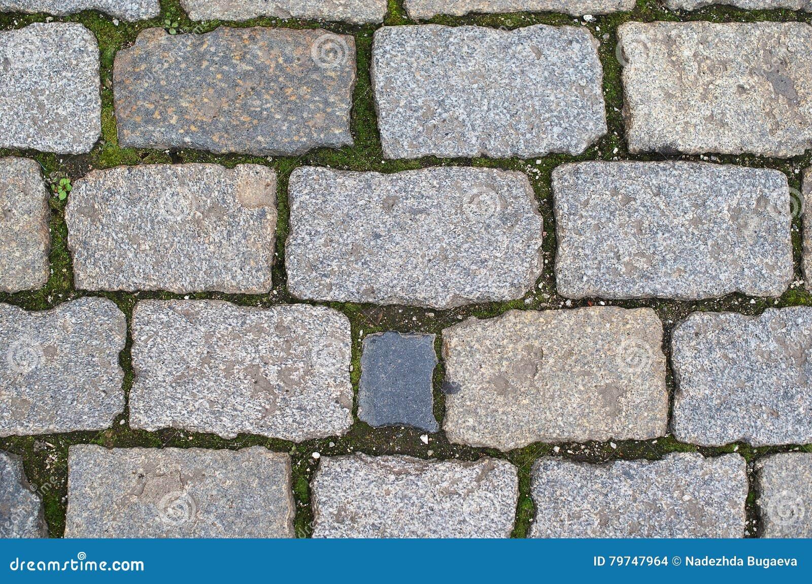 Brickes grises en la tierra