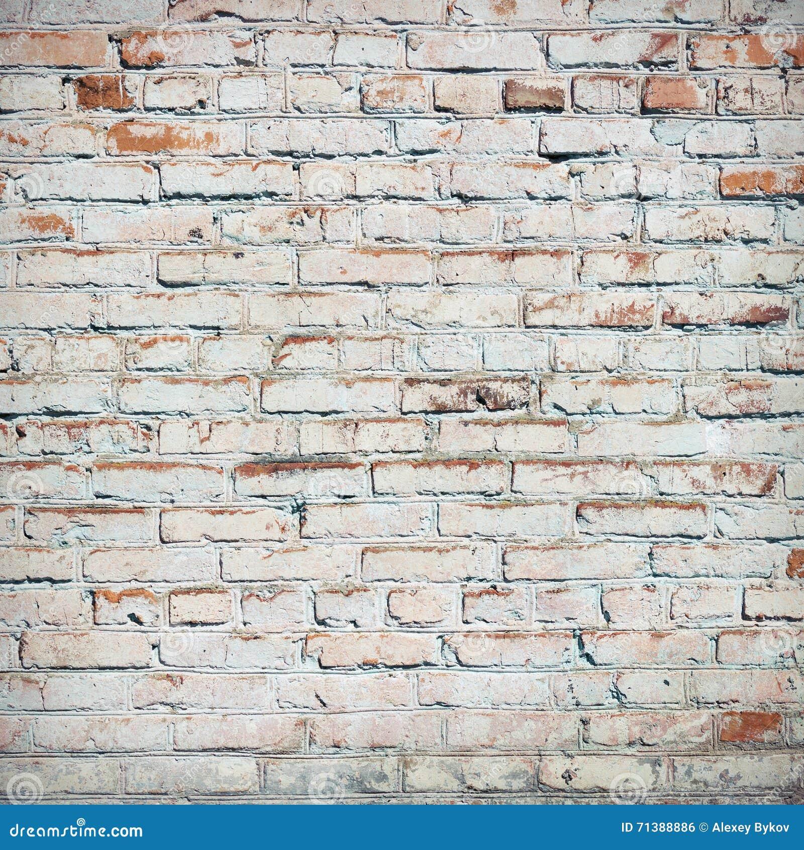 Bricks Painted White Stock Photo Image 71388886