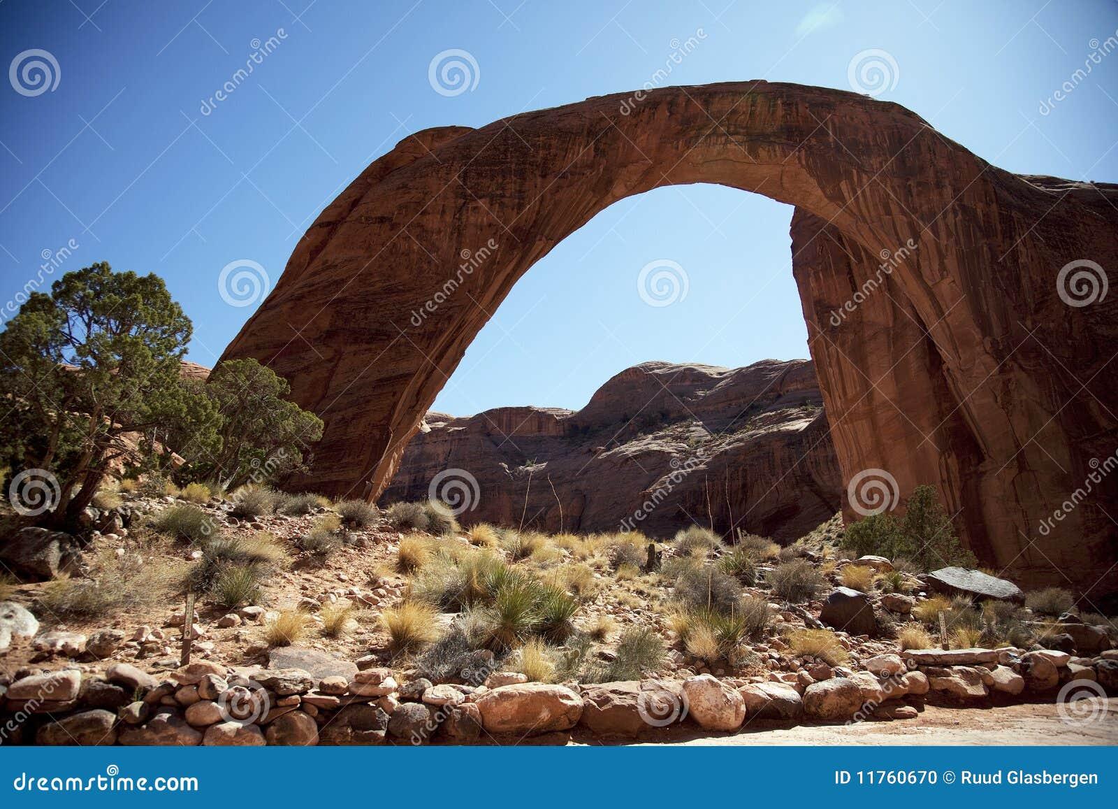Bridżowa tęcza