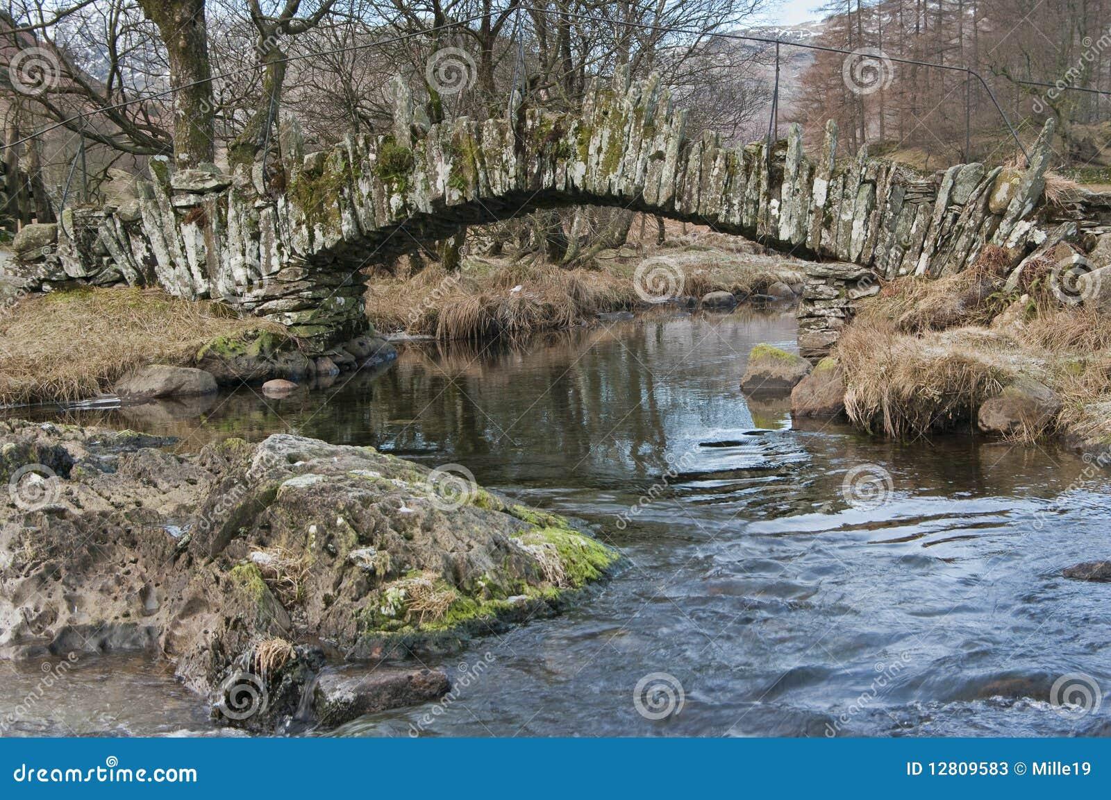 Bridżowi gromadzcy angielscy jeziorni łupkarzi