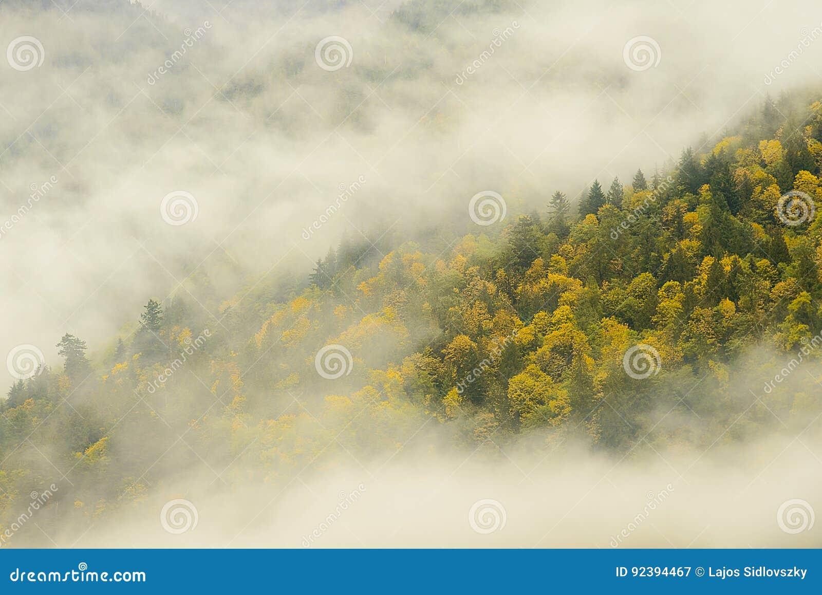 Bridal przesłona Spada prowincjonału park w mgłowym, Kanada