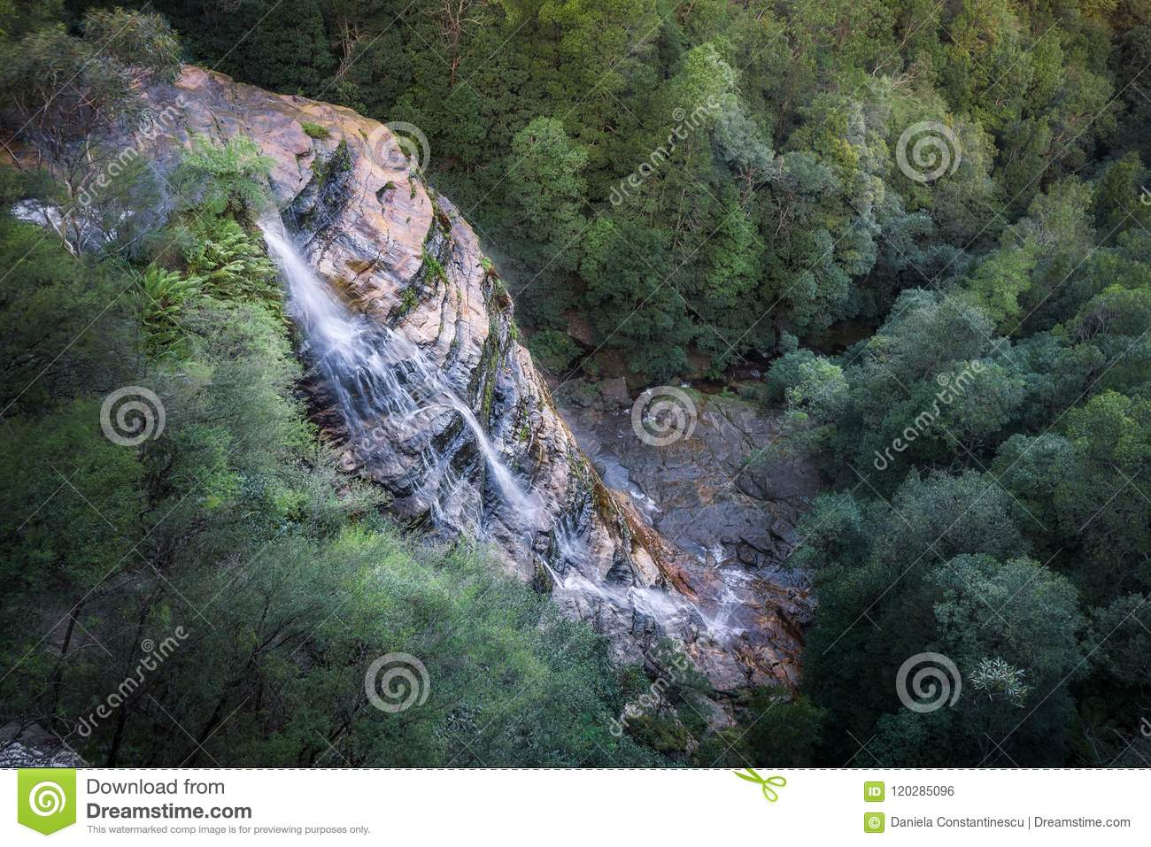 Download Bridal Veil Falls At Leura Cascades In Blue Mountains Stock Photo - Image of mountains, leaves: 120285096