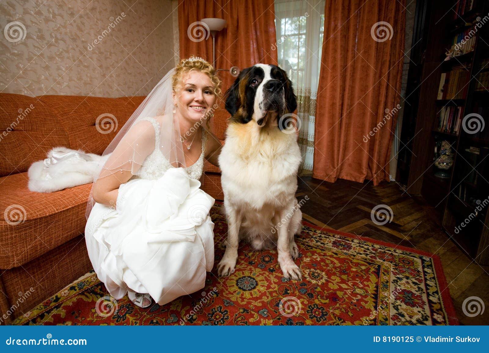 Bride And Dog Royalty Free Stock Photo Image 8190125