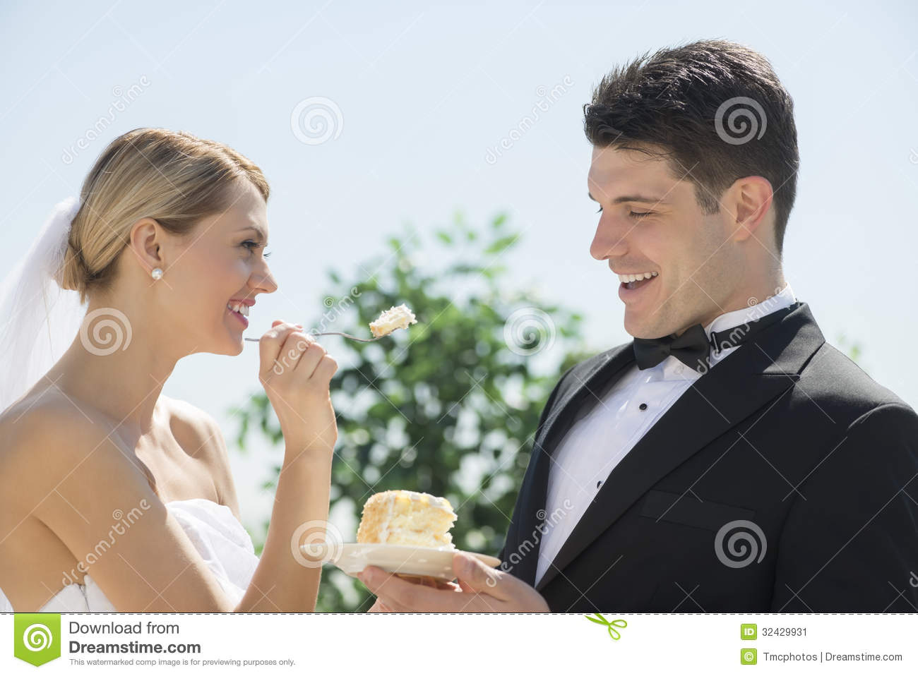 dream meaning eating wedding cake groom feeding his some wedding cake stock photo 13733