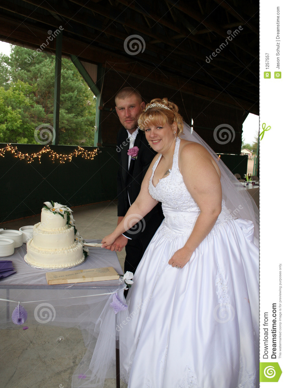 country songs to cut the wedding cake and groom cutting wedding cake royalty free stock 12986