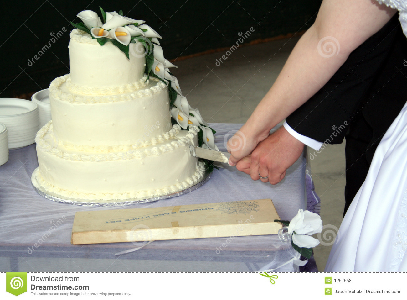 how to cut wedding cake bride and groom and groom cutting wedding cake royalty free stock 15642