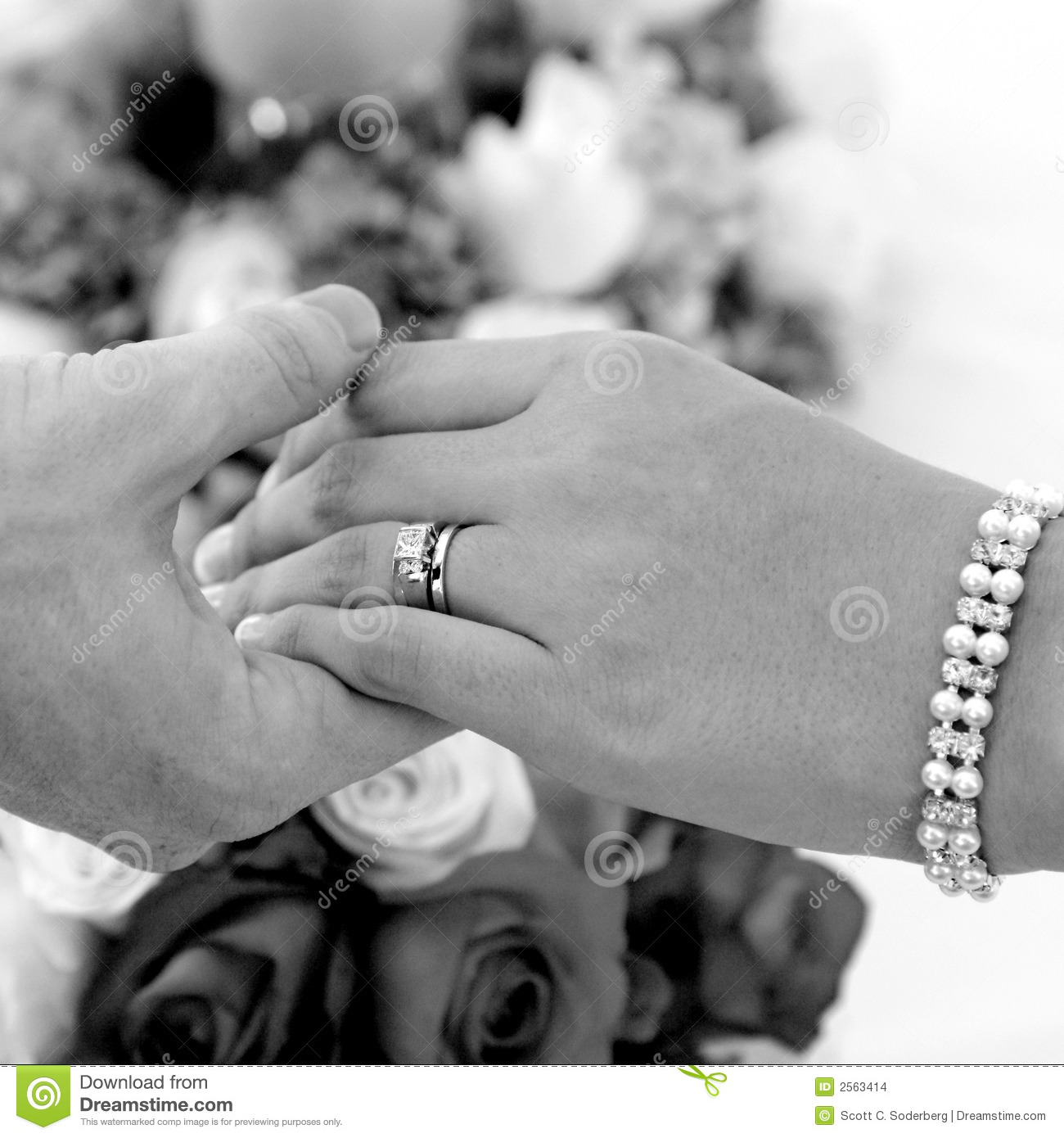 Bride And Groom Hands Stock Images Image 2563414