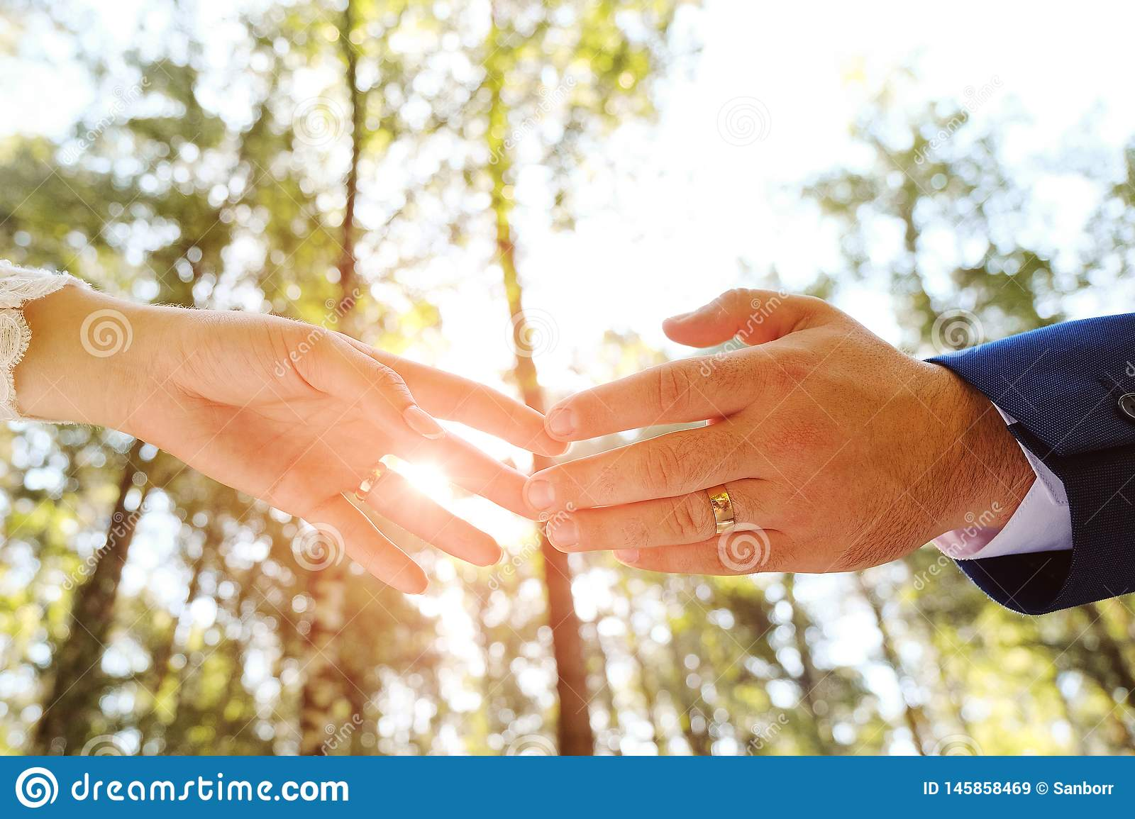 The bride and groom holding hands in the Park or forest.In the hands of a wedding ring. The sun shines. Close up