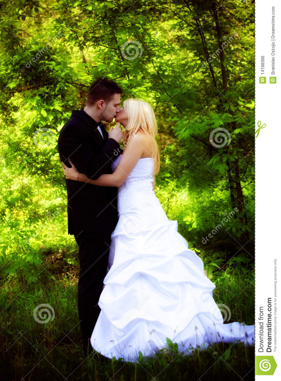 Bride And Groom Kiss Royalty Free Stock