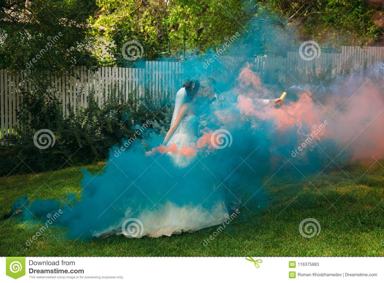 The Bride And Groom With Smoke Bombs On A Field With Green Grass ...