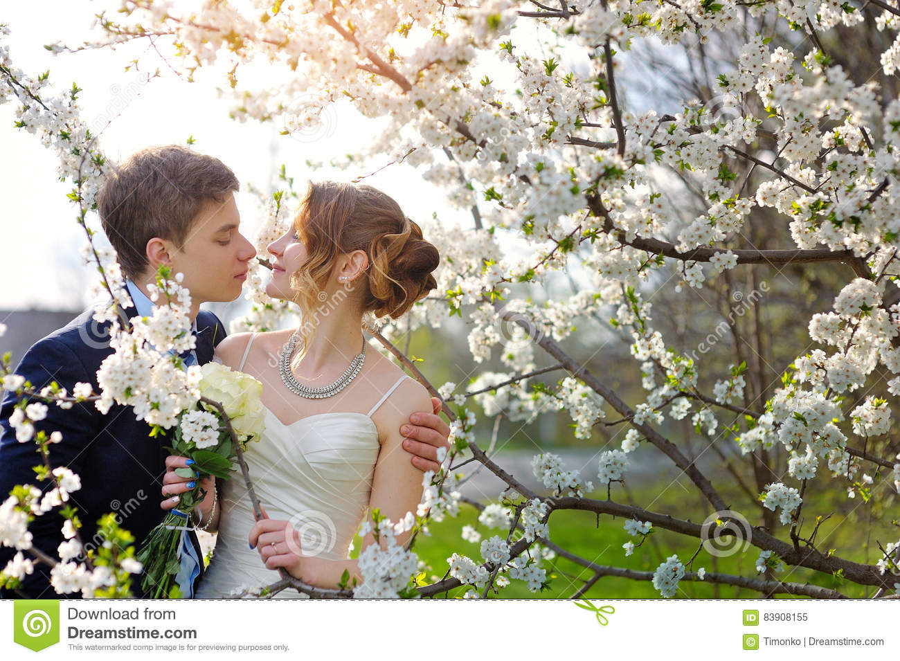 Wedding kiss stock photos download 32171 images bride and groom at the wedding kiss in spring walk park royalty free stock photo junglespirit Images