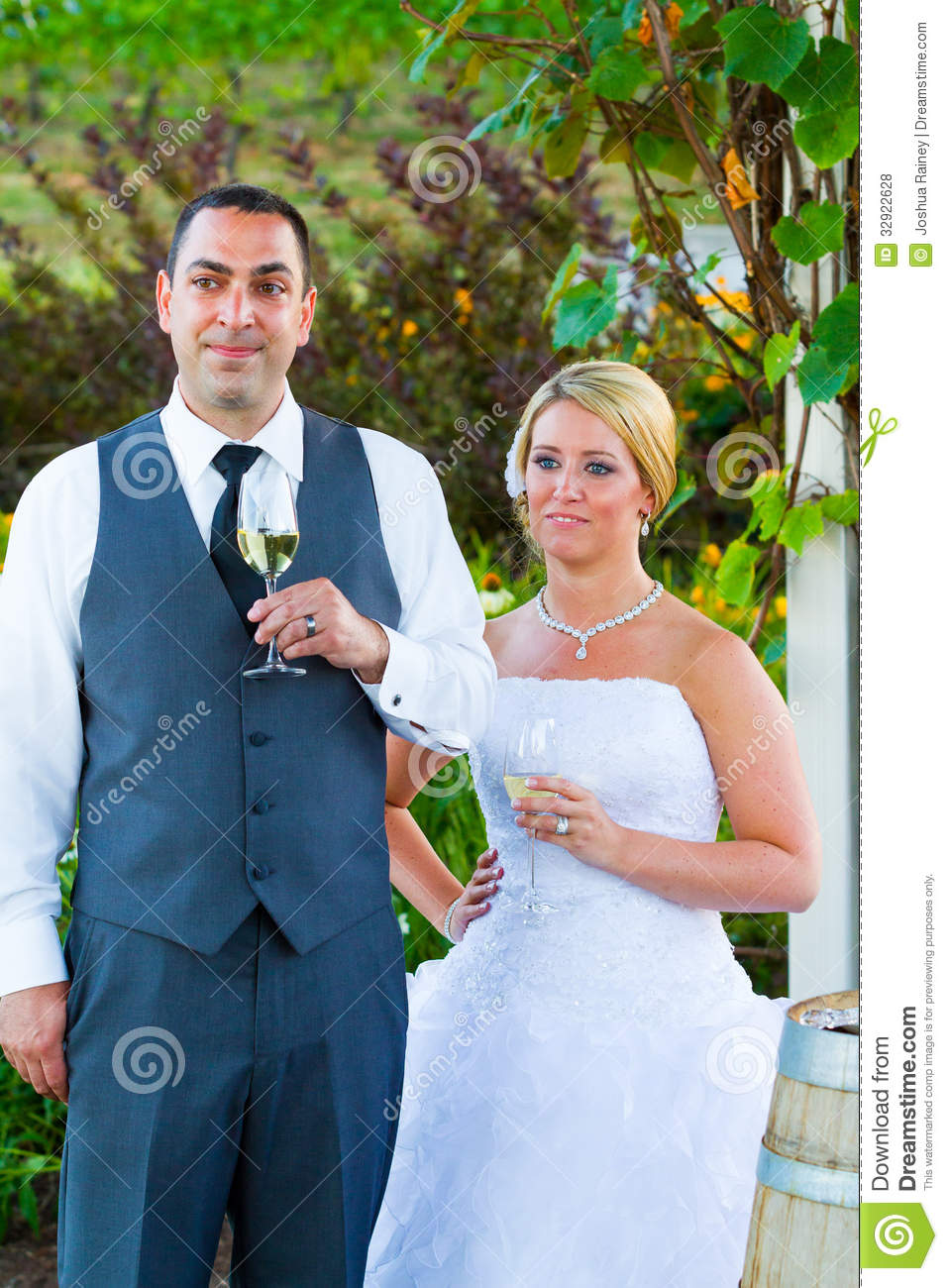 Bride and groom wedding toasts stock photo image 32922628 bride and groom wedding toasts junglespirit Image collections