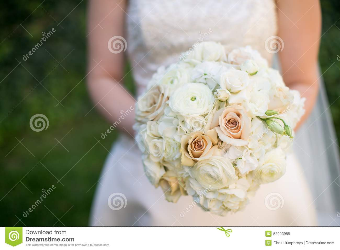 Bride holding wedding bouquet of pink and white flowers stock image bride holding wedding bouquet of pink and white flowers izmirmasajfo
