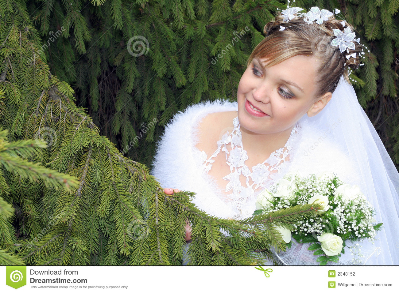Download Bride looking for groom stock photo. Image of hairstyle - 2348152