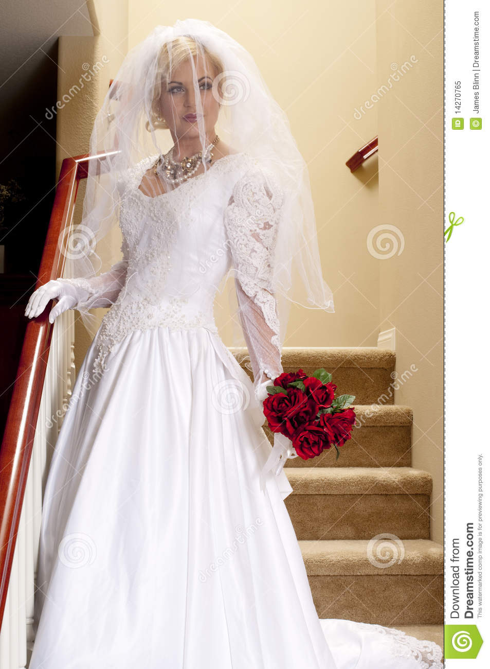Bride Striptease 1 Royalty Free Stock Photo Image 14270765