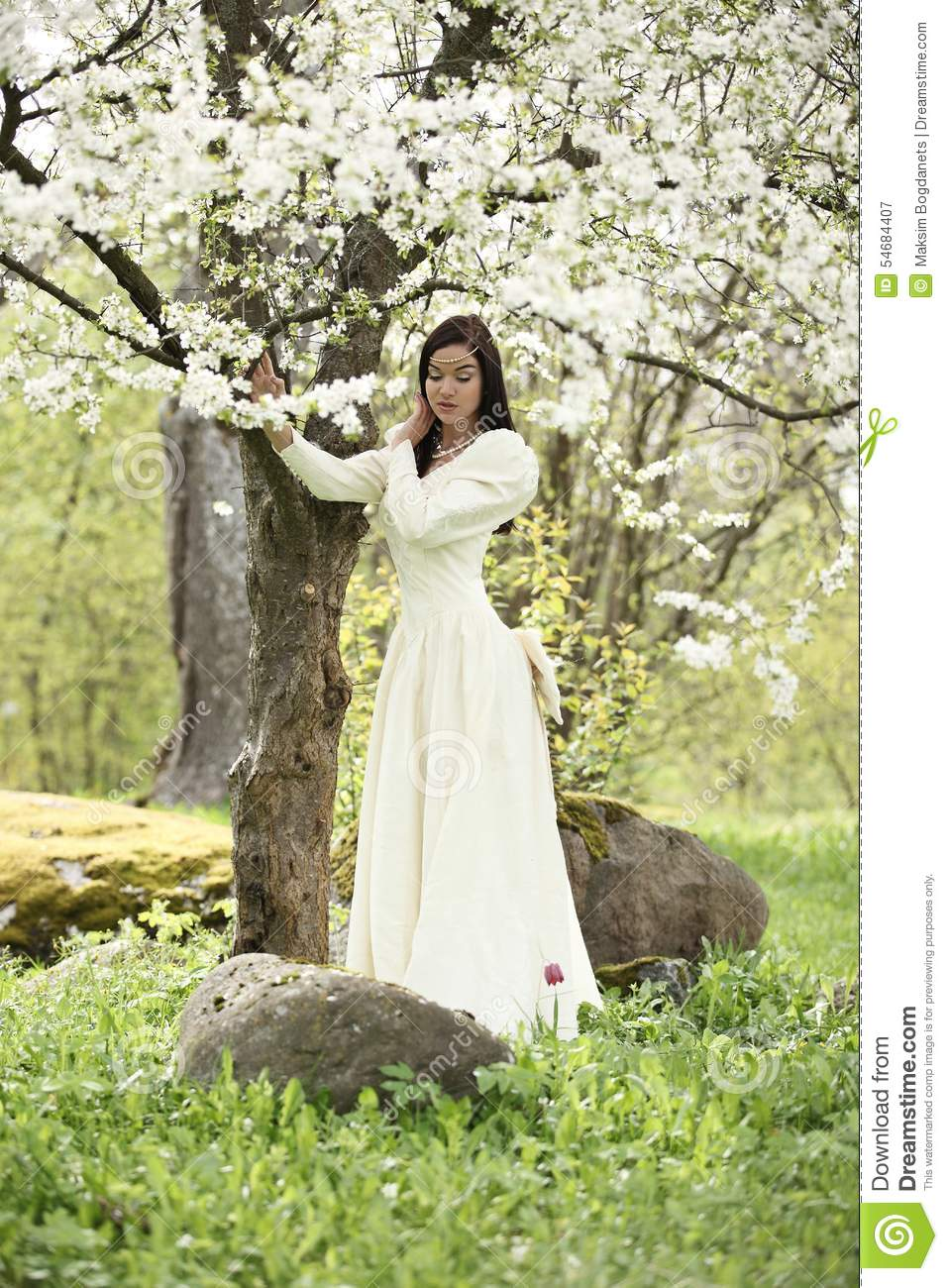 Bride wedding dress in forest vintage white tree stock for Forest wedding dress vintage