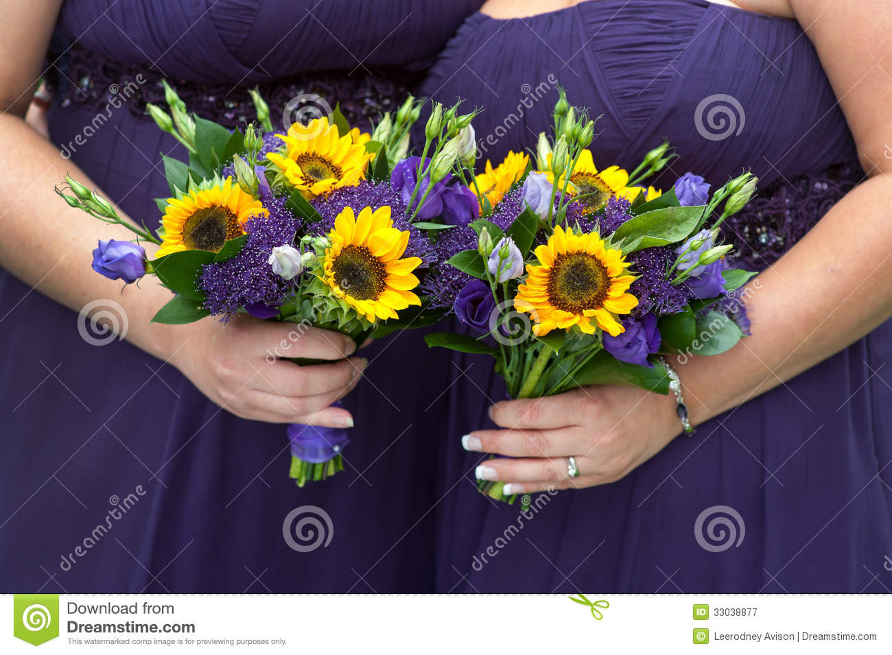 b52acf1d7d0 Bridesmaids In Purple With Sunflower Bouquets Stock Image - Image of ...