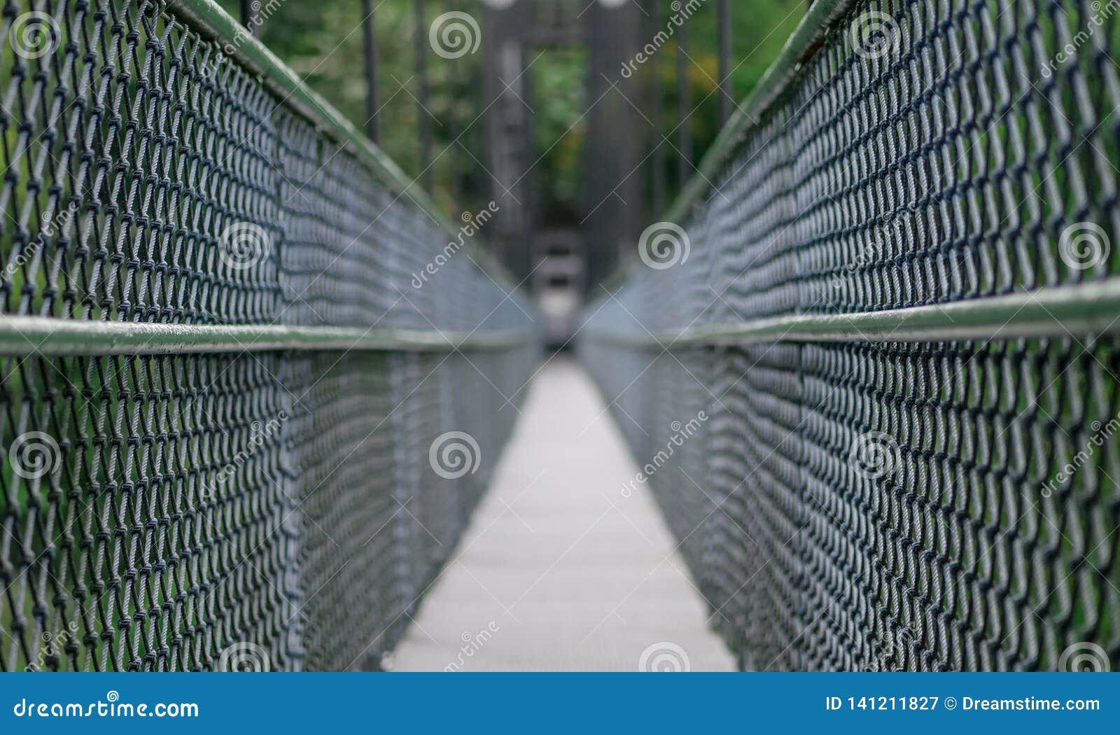 Bridge deep within Singapore