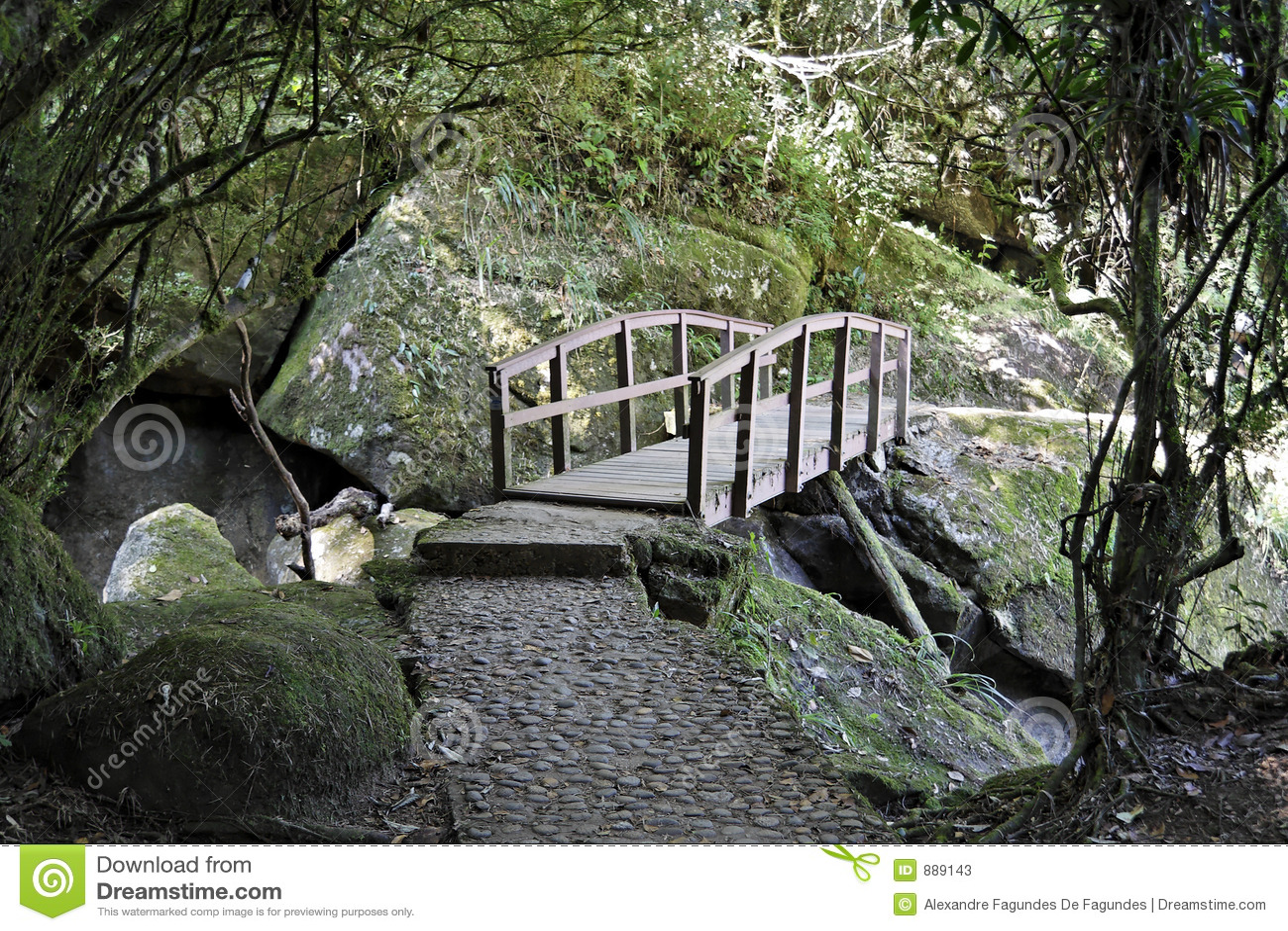 Bridge parku narodowego itatiaia ścieżki