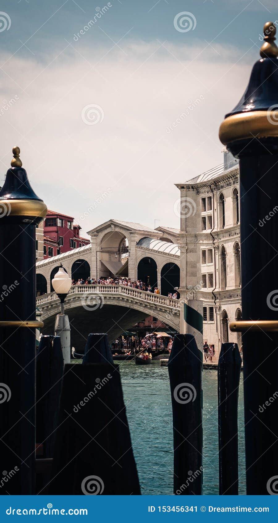 Bridge of rialto framed by poles